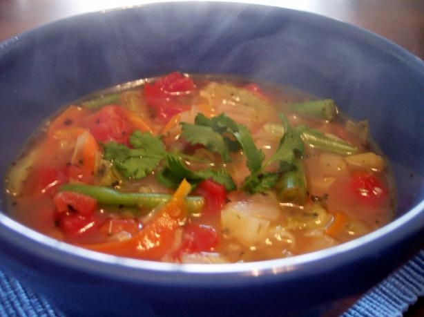Garden Vegetable Soup. Photo by jrusk