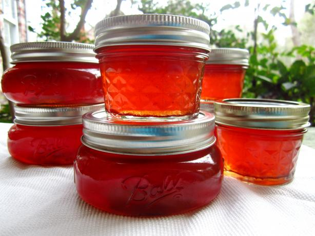Winter Apple Jelly. Photo by gailanng