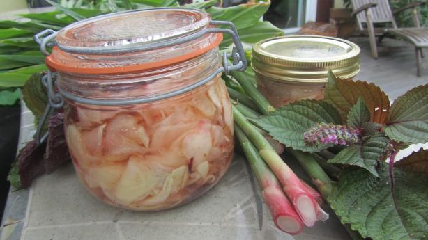 Pickled Ginger. Photo by Rita~