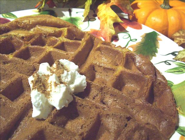 Spiced Pumpkin Waffles. Photo by * Pamela *