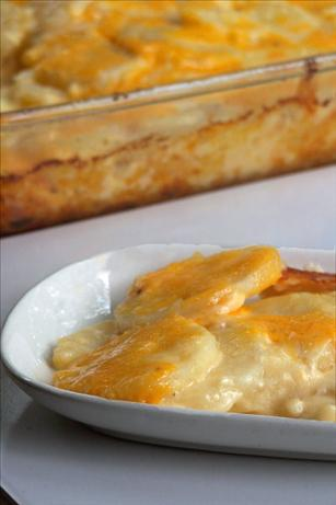 Simply Rich Cheddar Scalloped Potatoes. Photo by NcMysteryShopper