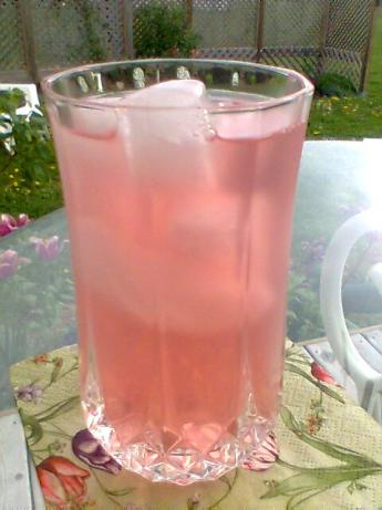 Iced Rhubarb Tea. Photo by Diana #2