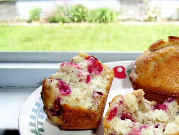 Cranberry Orange Muffins. Photo by Suzanna Marie