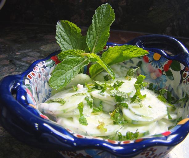 Cucumber Salad (Turkish Cacick). Photo by Derf