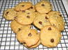 Chocolate Chip, Oatmeal, Walnut and Coconut Cookies. Recipe by Carol Bullock