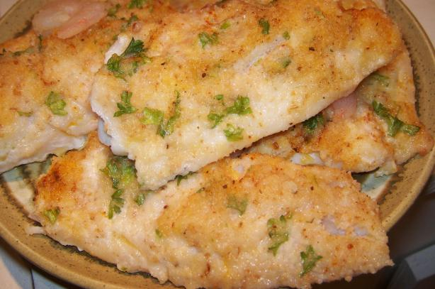 Oven Baked Fish Fillets With Parmesan Cheese. Photo by Elly in Canada